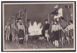 """DT- Reich (005241) Propaganda Sammelbild Deutschland Erwacht"""""""" Bild 63 Schwören Am Flammenaltar, Deutsche Zu Sein - Deutschland"""