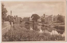 Waterbridge  The Hospital - Other
