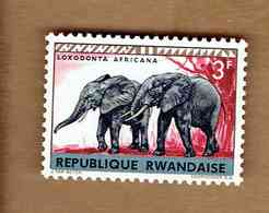 REPUBLIQUE RWANDAISE.(COB-OBP) 1964 - N°59   *ANIMAUX SAUVAGES *   3F- Neuf - Rwanda