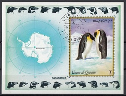 Umm Al Qiwain 1972 Bf. 51B Antarctica Pinguini Pinguins Sheet Perf. CTO - Umm Al-Qiwain