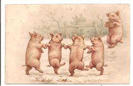 COCHONS Humanisés - Dance Des Porcelets - Cochons