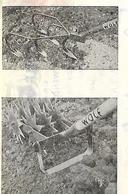 Facture + Traite 1952 / Allemagne SARRE / SAINT WENDEL / Outils WOLF - Germany