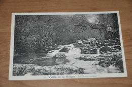 5895- VALLEE DE LA HOEGNE, LE CHENE RUSIQUE / ANIMEE - Spa