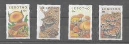Serie De Lesotho Nº Yvert 852/55 **  SETAS (MUSHROOMS) - Lesotho (1966-...)