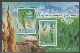 KYRGYZSTAN, 2017, MNH, FLORA OF KYRGYZSTAN, PLANTS, RICE,MOUNTAINS, SHEETLET - Food