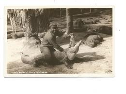 AMN.0031/ The Largest Smile In Florida - Alligator - Etats-Unis