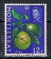 Montserrat Y/T 167 (0) - Montserrat