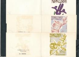 Marokko 3 Souvenier Karten      (zu20  ) Siehe Scan - Marokko (1956-...)