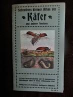 Schreibers Kleiner Atlas Der KAFER Und Anderer Insekten - Animaux