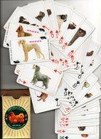 Honden Chiens Dogs Hunde Speelkaarten Jeu De Cartes Playing Cards Spielkarten - Cartes à Jouer Classiques