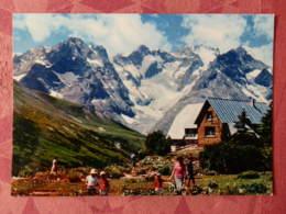 Dep 05 , Cpm Col Du LAUTARET , Le Jardin Alpin , La Meije , Le Pavé , Le Pic Gaspart , Le Glacier De L'Homme  (14.979) - Francia