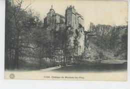 BELGIQUE - LIEGE - Château De MODAVE LEZ HUY - Modave