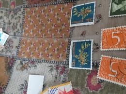 AUSTRALIA IL CORALLO - Stamps