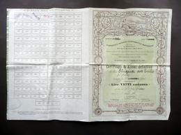 Certificato Azionario Consorzio Agrario Cooperativo Modenese N.14 1 Azione 1903 - Non Classificati