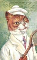 Chat Humanisé En Joueur De Tennis En 1909 - Belle Carte - Chats