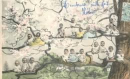 Bébés Dans Un Arbre En 1905 - Babies