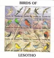 Lesotho Nº 993 Al 1012 - Lesotho (1966-...)