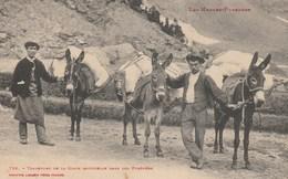 CPA - Muletiers - Transport De La Glace Naturelle - Marchands Ambulants