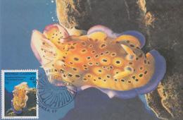 Carte  Maximum  1er Jour   NOUVELLE CALEDONIE   Aquarium  De  NOUMEA   1990 - Maximum Cards