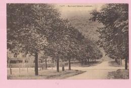 BELGIQUE Tilff Boulevard Lieutenant - Other