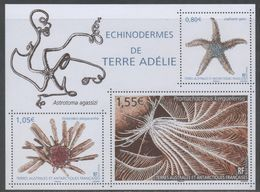 TAAF, FRENCH ANTARCTIC, 2018, MNH , MARINE LIFE, ECHINODERMES OF ADELIE, STAR FISH, SHEETLET - Marine Life