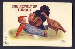 Thanksgiving - The Revolt Of Turkey - Turkey Sitting On Boy 1907 Bernhardt Wall - Thanksgiving