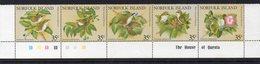 ILE NORFOLK - NORFOLK ISLANDS - OISEAUX - BIRDS - 1981 - - Norfolk Island
