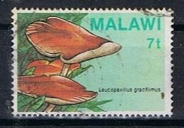 Malawi Y/T 445 (0) - Malawi (1964-...)