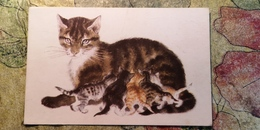 "Lebedev ""Kittens""  A Kitten /  Cat / Chat  - OLD Soviet Postcard 1970 - Chats"