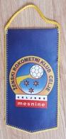 Pennant Women's Handball Club ZRK Celje Celjske Mesnine Slovenia Flag 10x 20cm - Handball