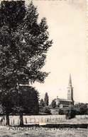 Aandenken Uit Maaseik Kerk   Postkaart Met 10 Kleine Kaartjes      X 4529 - Maaseik