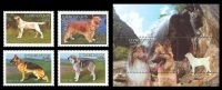 Uzbekistan 2006 Mih. 616/19 + 620 (Bl.40) Fauna. Dogs MNH ** - Uzbekistan
