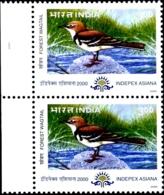 BIRDS-FOREST WAGTAIL- PAIR- INDEPEX ASIANA-INDIA-2000-MNH-H-564 - Climbing Birds