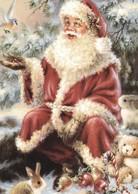 Santa Claus Feeding A Little Bird - Santa Claus
