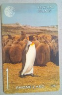 159CFKB Pengiuns  15 Pounds - Falkland Islands