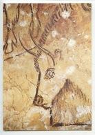 Tarascon Sur Ariège Grotte De NIAUX : Salon Noir, époque Magdalénienne - Tête De Bison (préhistoire) - Tarascon
