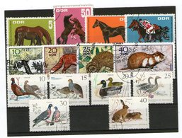 Lot Tiere (DDR) Gestempelt - Stamps