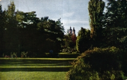 Kempten, Partie Im Stadtpark, 1911 - Kempten
