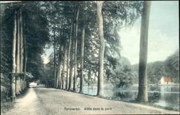 Tervueren : Allée Dans Le Parc - Tervuren