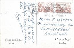 Algerie Algeria 1990 Tougourt Oasis Viewcard - Algerije (1962-...)