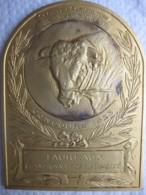 Médaille Taureaux Championnat De La Qualité, Concours 1923, Yvetot .76 - Seine-Maritime - Unclassified
