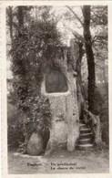 TIEGEM - La Chaire De Vérité - De Predikstoel - Anzegem