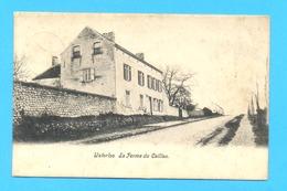 PK/CP  WATERLOO 1905 : La Ferme Du Caillou. Met STERstempel ALSEMBERG. - Waterloo
