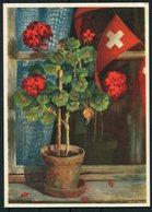 1938 Switzerland Bundesfeierkarte - Switzerland