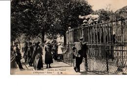"""1923. - PARIS - Jardin Des Plantes.- L'Eléphant """"Tobie"""".  RARE. Etat Neuf. Edit. C.M. A Circulé. Voir Scan. - Parks, Gardens"""