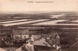 BILLIERS- Vue Generale Des Marais Salants - France