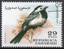 Saharaui 1997 Birds Uccelli : Ballerina Bianca - Motacilla Alba - Nuovo CTO - Sparrows