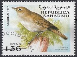 Saharaui 1997 Birds Uccelli : Usignolo Comune - Luscinia Megarhynchos - Nuovo CTO - Sparrows