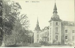 Seny -- Château Fabri.   (2 Scans) - Tinlot