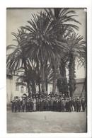 20801 -  Carte Photo Groupe Hommes Sous Les Palmiers à Définir - Manifestations